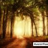 Spiritisme et communication avec l'au dela